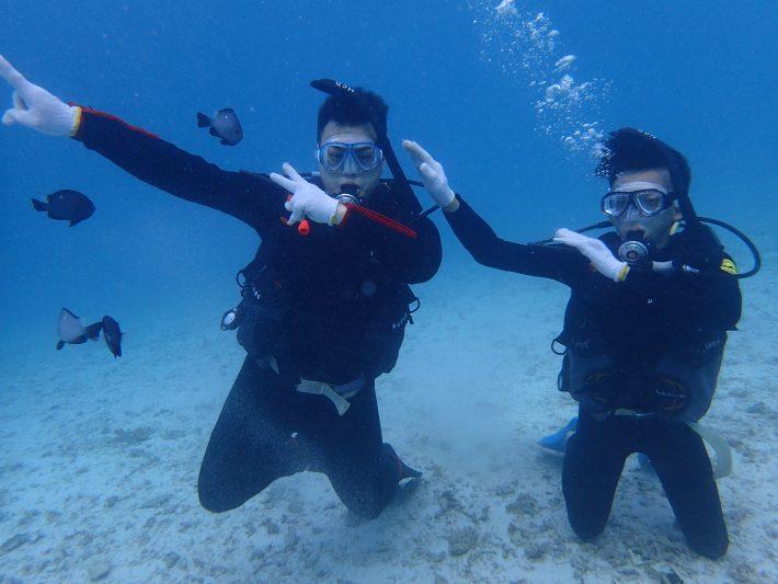 潛水 夢幻礁