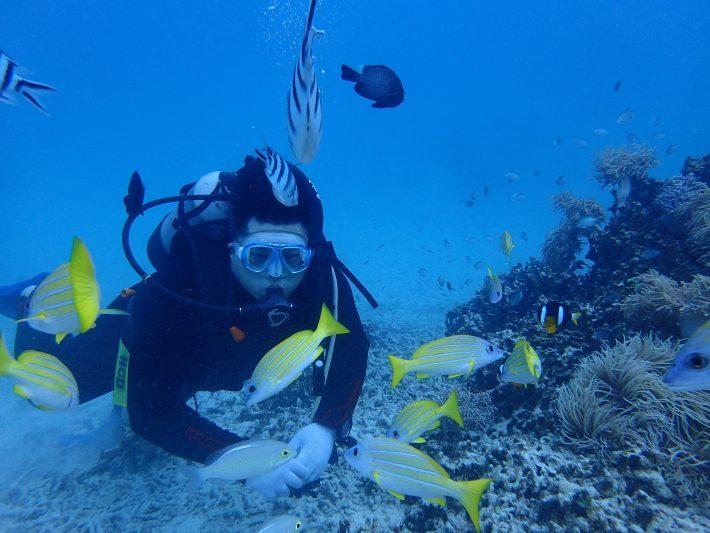 藍動 潛水