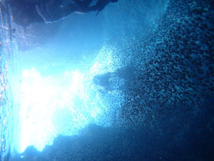 日本 沖繩 青洞