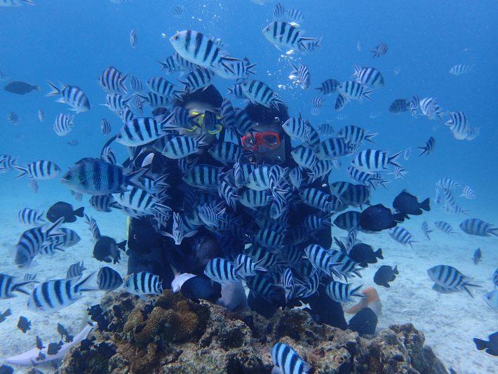夢幻礁 潛水 恩納