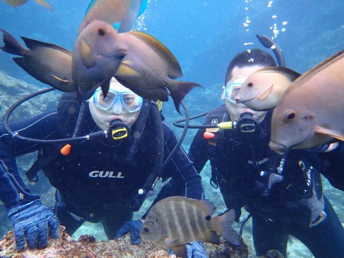 沖繩潛水 青之洞窟 浮潛 FUN DIVE