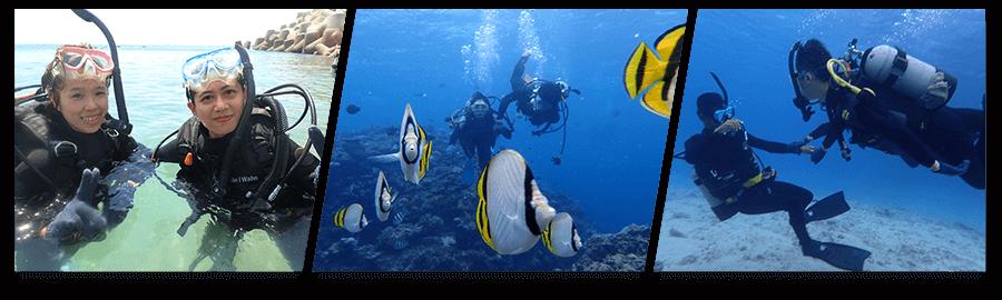 坐船去!青洞&珊瑚礁體驗潛水